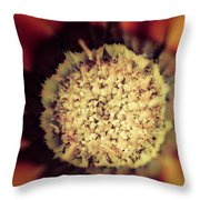 Flower Beauty Iv Throw Pillow by Marco Oliveira