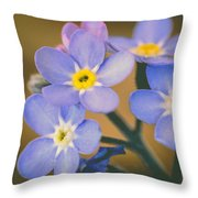 Forget Me Nots Throw Pillow by Marco Oliveira