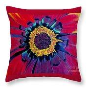 Flowerburst Throw Pillow by Rory Sagner