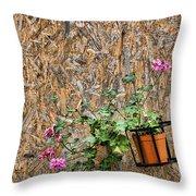 Flowers On Wall - Taromina Throw Pillow by David Smith