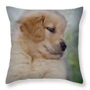 Fluffy Golden Puppy Throw Pillow by Susan Candelario