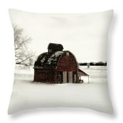 Flurry Throw Pillow by Julie Hamilton