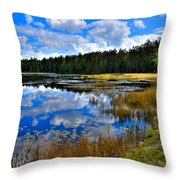 Fly Pond In The Adirondacks II Throw Pillow by David Patterson