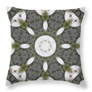 Fly The Flag Throw Pillow by Alan Look