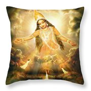 Flying Home Throw Pillow by Ananda Vdovic