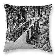 Foot Bridge In Winter Throw Pillow by David Rucker