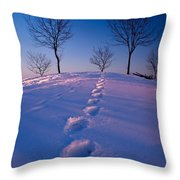Footsteps Throw Pillow by Cale Best