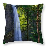 Forest Mist Throw Pillow by Chad Dutson