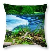 Forest Stream Running Fast Throw Pillow by Michal Bednarek