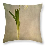 foretaste of spring Throw Pillow by Priska Wettstein
