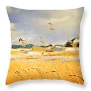 Forgotten Farmhouse Throw Pillow by Theresa Tahara