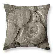 Fossilized Shell - B And W Throw Pillow by Klara Acel