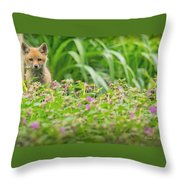 Fox In The Garden Throw Pillow by Everet Regal