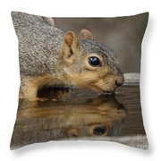 Fox Squirrel Throw Pillow by Lori Tordsen