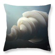Fractal Seashell  Throw Pillow by Pixel  Chimp