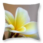 Fragrant Frangipani Flower Throw Pillow by Sabrina L Ryan