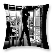 French Doors Throw Pillow by Jt PhotoDesign