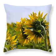 French Sunflowers Throw Pillow by Georgia Fowler