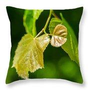 Fresh - Featured 3 Throw Pillow by Alexander Senin