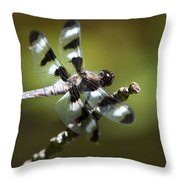 Fresh Morning Dragonfly Throw Pillow by Christina Rollo