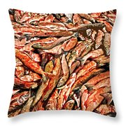 Freshly Catched Salmons At The Nenana River - Ak Throw Pillow by Juergen Weiss