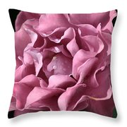 Frilly Rose Throw Pillow by Joy Watson