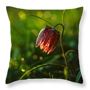 Fritillaria Meleagris Throw Pillow by Davorin Mance