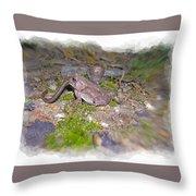 Frog Eating A Worm Throw Pillow by Susan Leggett