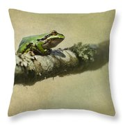 Frog Up A Tree Throw Pillow by Angie Vogel