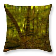 From River Rocks To Forest Reflections Throw Pillow by Adam Jewell