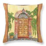 Front Door 2 Throw Pillow by Debbie DeWitt