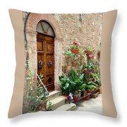 Front Door Throw Pillow by Ellen Henneke