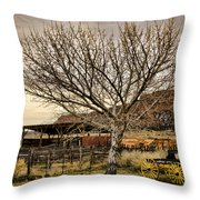 Frontier Throw Pillow by Heather Applegate
