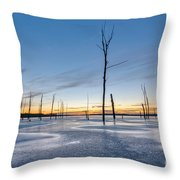 Frost Bite Throw Pillow by Michael Ver Sprill