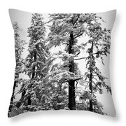 Frozen Beauty Throw Pillow by Betty Depee
