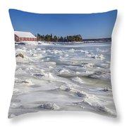 Frozen Throw Pillow by Evelina Kremsdorf