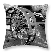 Frozen In Time Throw Pillow by Steven Milner