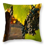 Fruit of the Vine Throw Pillow by Bill Gallagher