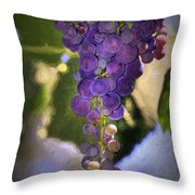 Fruit Of The Vine Throw Pillow by Donna Kennedy