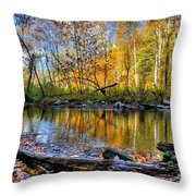 Full Box Of Crayons Throw Pillow by Debra and Dave Vanderlaan