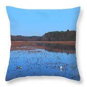 Full Moon At Great Meadows National Wildlife Refuge Throw Pillow by John Burk