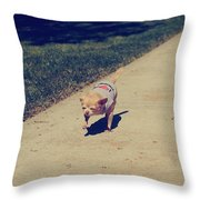 Full Speed Ahead Throw Pillow by Laurie Search