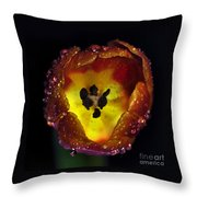 Furnace In A Tulip 2 Throw Pillow by Kaye Menner