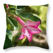 Fushia Oleander Near Phoenx Arizona 1 Throw Pillow by Douglas Barnett