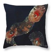 Galapagos Islands Throw Pillow by Spot Image