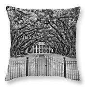 Gateway To The Old South Bw Throw Pillow by Steve Harrington