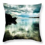 Geiger Key Throw Pillow by Karen Wiles