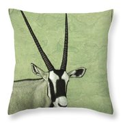Gemsbok Throw Pillow by James W Johnson