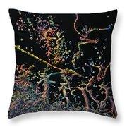 Genesis Throw Pillow by James W Johnson