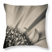 Gerbera Blossom - Bw Throw Pillow by Hannes Cmarits